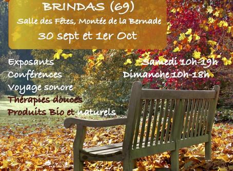 Salon des Z-Arts-Zen de Brindas (69) -- 30/9 - 1/10