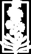 blazing-star-white-logo.png