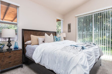 Paloma del Sol Staged Home