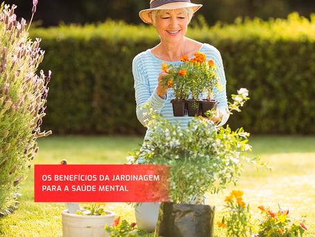 Os benefícios da jardinagem para a saúde mental