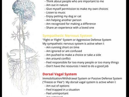 Befriending Our Autonomic Nervous System