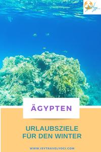 urlaubsziele-winter-warm-reisebericht-reisetipps-reiseideen-ägypten