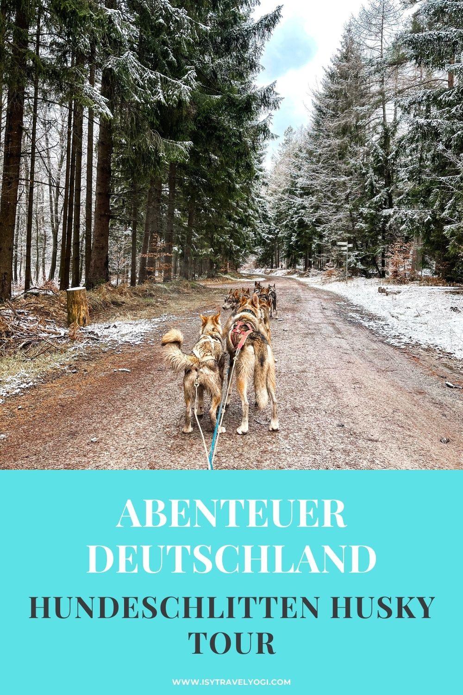 Husky-Hundecshlitten-Wagenfahrt-Deutschland-Erfahrungen