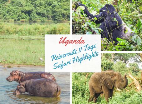 Uganda: Unsere Reiseroute 11 Tage Uganda mit allen Safari Highlights und Kosten