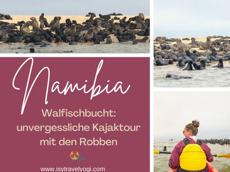 Namibia Walfischbucht: Unvergessliche Kajaktour mit tausenden Robben