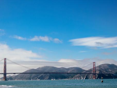 San Francisco zum verlieben und staunen:Alcatraz und Muir Woods