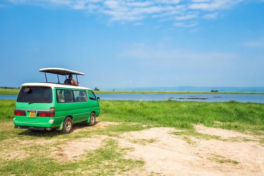 Uganda-Gorilla-Trekking-Kosten-Reisebericht-Individual-Reise