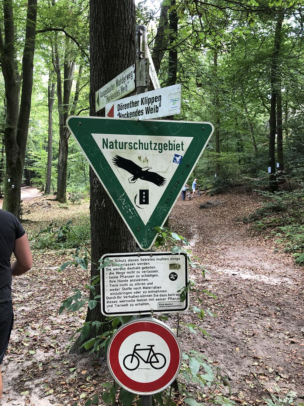 Dörenther-klippen-wandern-münsterland-ibbenbüren