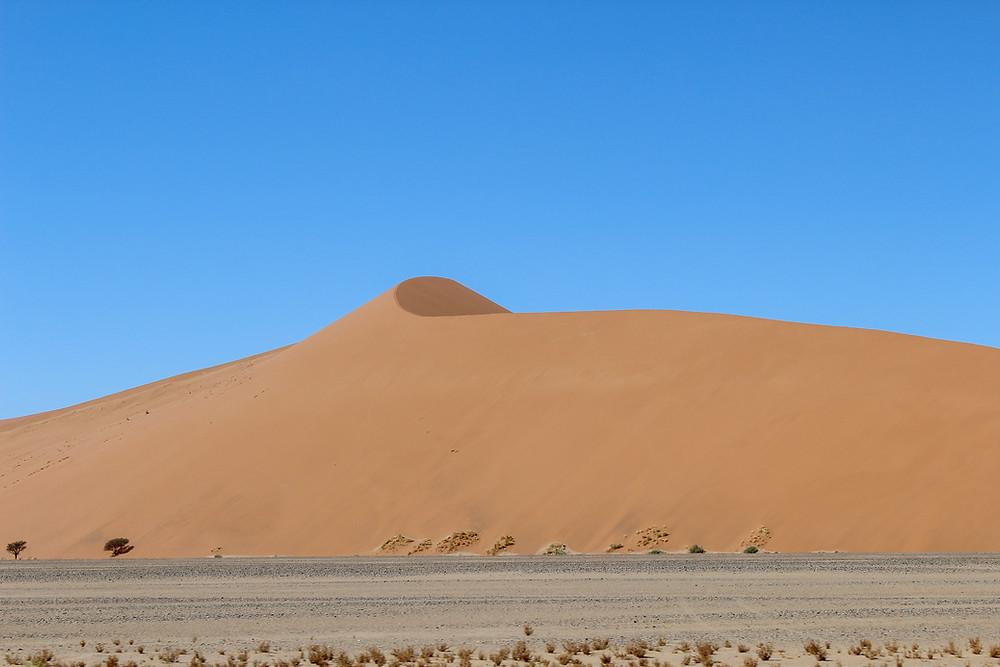 Namibia-Sossusvlei-Düne-45-Reisetipps-Reisebericht