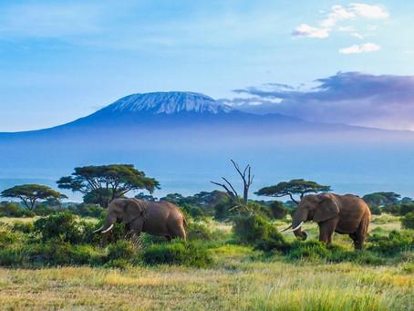 Tansania Urlaub- 10 Sehenswürdigkeiten und Highlights, die du nicht verpassen solltest!