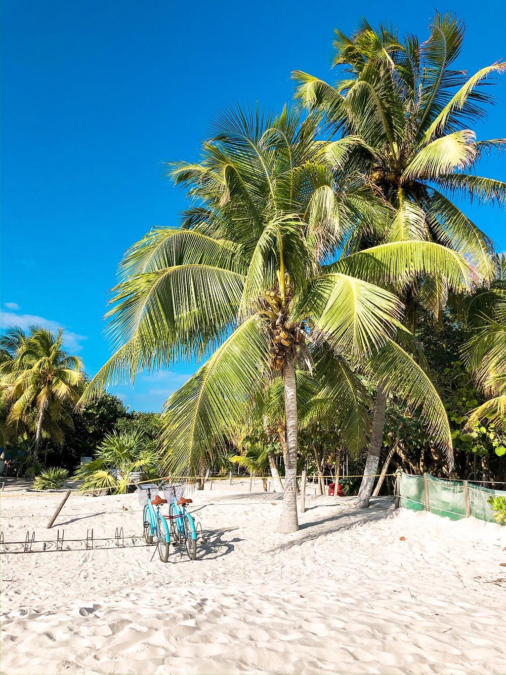 Mexiko-Tulum-Sehenswertes-playa-paraiso-Strand