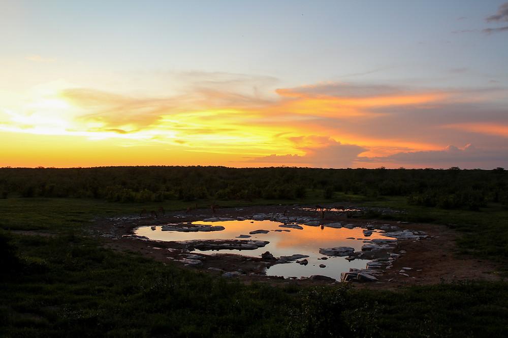 Etosha-Nationalpark-Namibia-Selbstfahrer-Camping-Regenzeit-Wasserloch-Sonnenuntergang