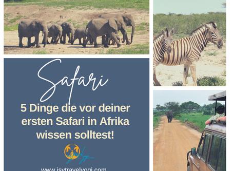 5 Dinge die du vor deiner ersten Safari in Afrika wissen solltest!