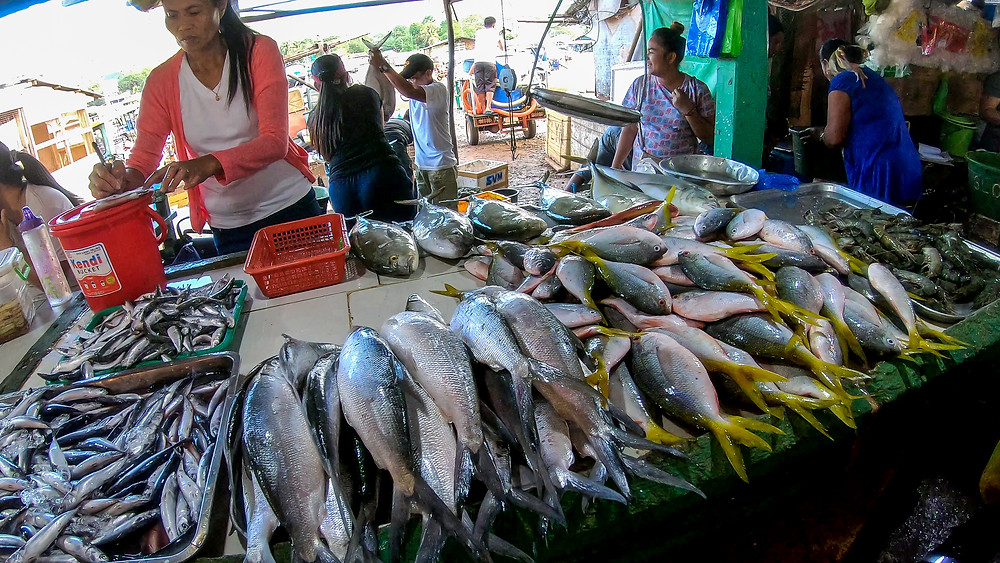 Philippinen-Coron-Palawan-Reisebericht-Unternehmungen-Tour