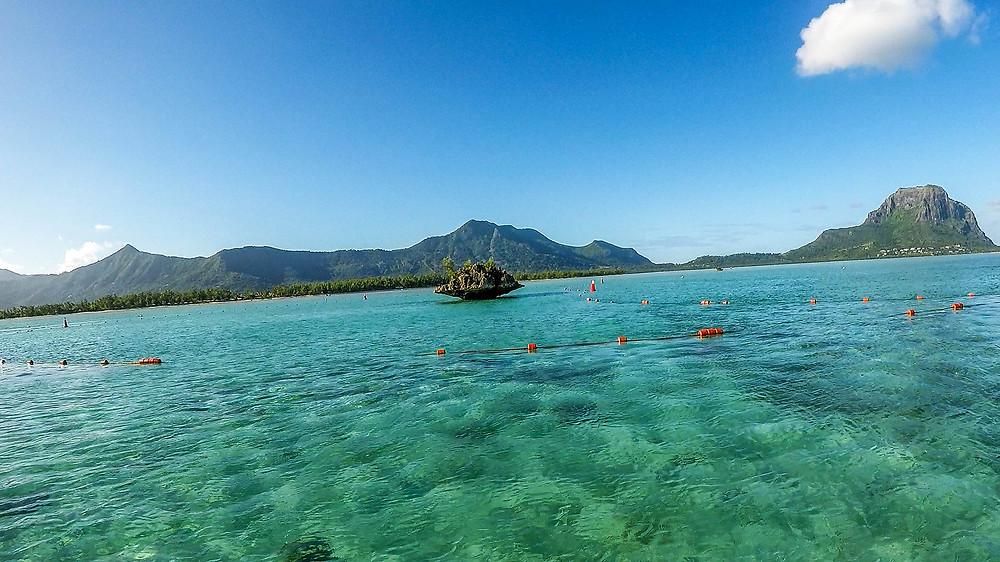 Mauritius-schwimmen-mit-Delfinen-Vitamin-Sea-Reisebericht-Reisetipps