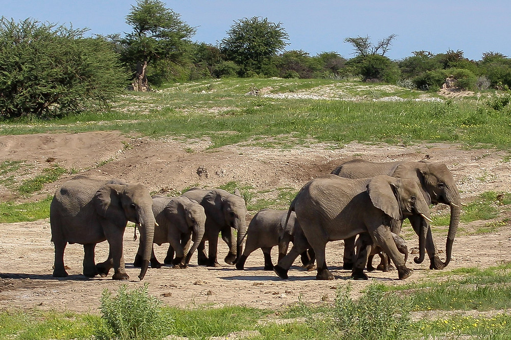 Namibia-Rundreise-Selbstfahrer