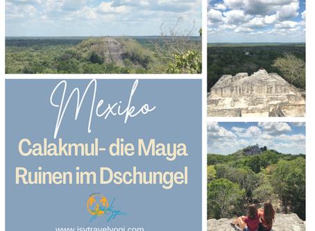 Mexiko Urlaub: Calakmul- ein Ausflug zu den Maya Ruinen im Dschungel