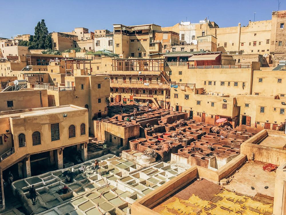 Fés-Sehenswertes-Reisetipps-Reisebericht-Medina-Tannery