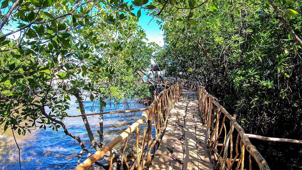 Coron, Palawan Hot Springs
