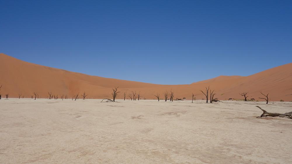 Deadvlei-Namibia-reisetipps