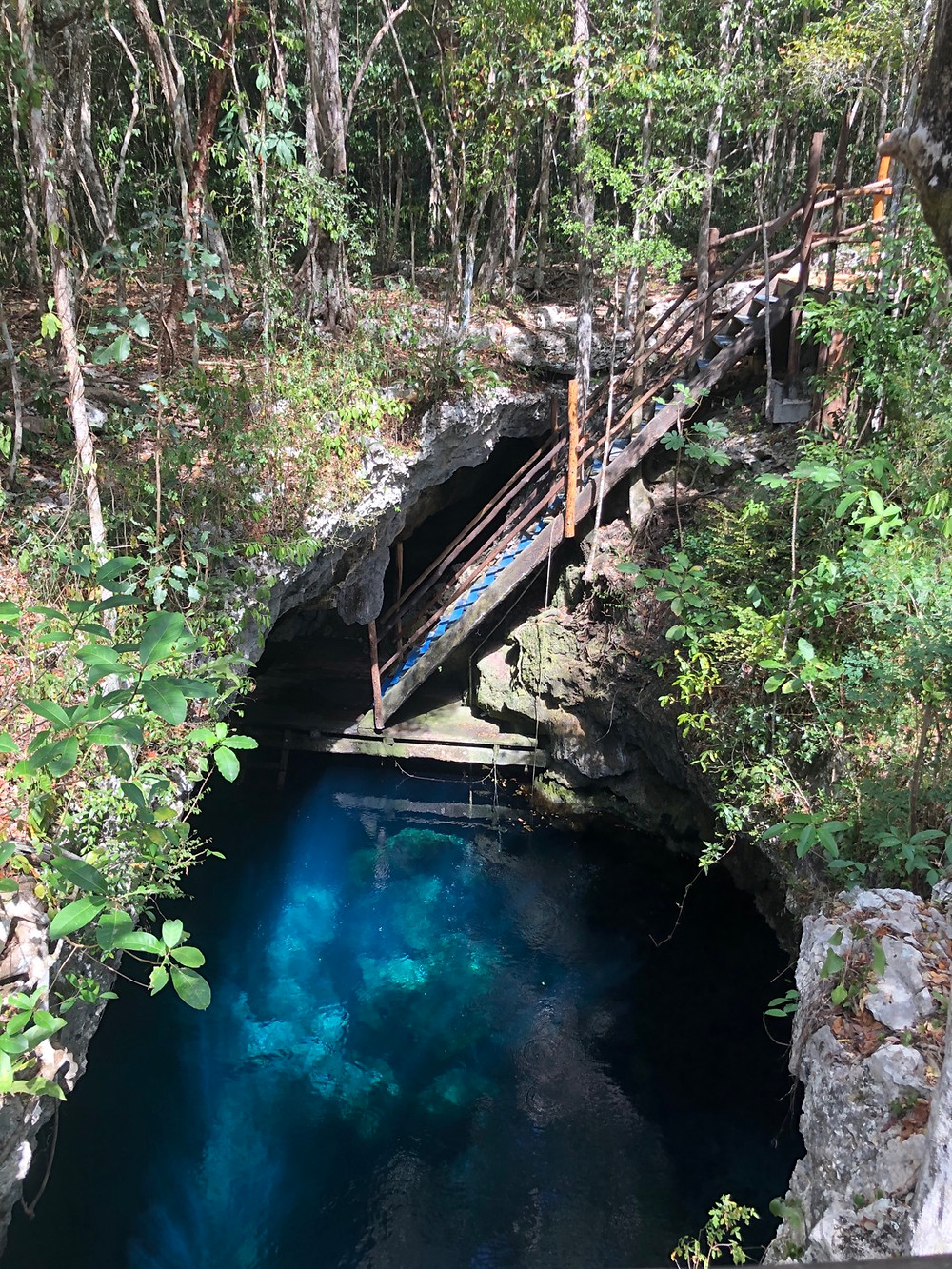 Tulum-Cenote-tauchen-el-pit-erfahrungTulum-Cenote-tauchen-el-pit-erfahrung
