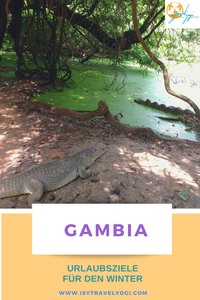 urlaubsziele-winter-warm-reisebericht-reisetipps-reiseideen-gambia