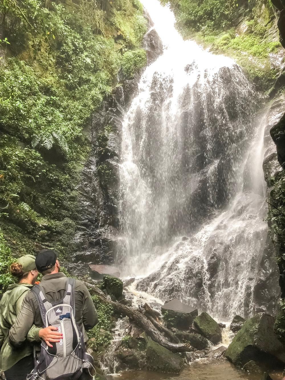 Uganda-Gorilla-Trekking-Kosten-Reisebericht