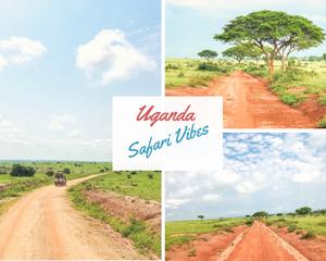 Uganda-Safari-vibes-urlaub-reisebericht