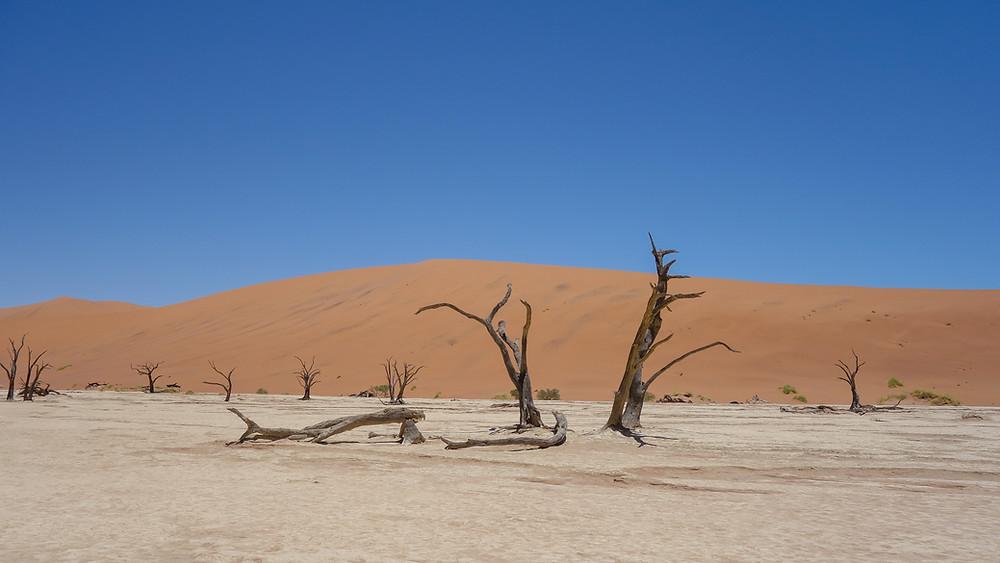 Namibia-Sossusvlei-Deadvlei-Reisebericht