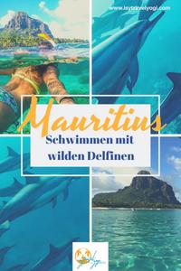 Mauritius-schwimmen-mit-wilden-Delfinen-Reisebericht