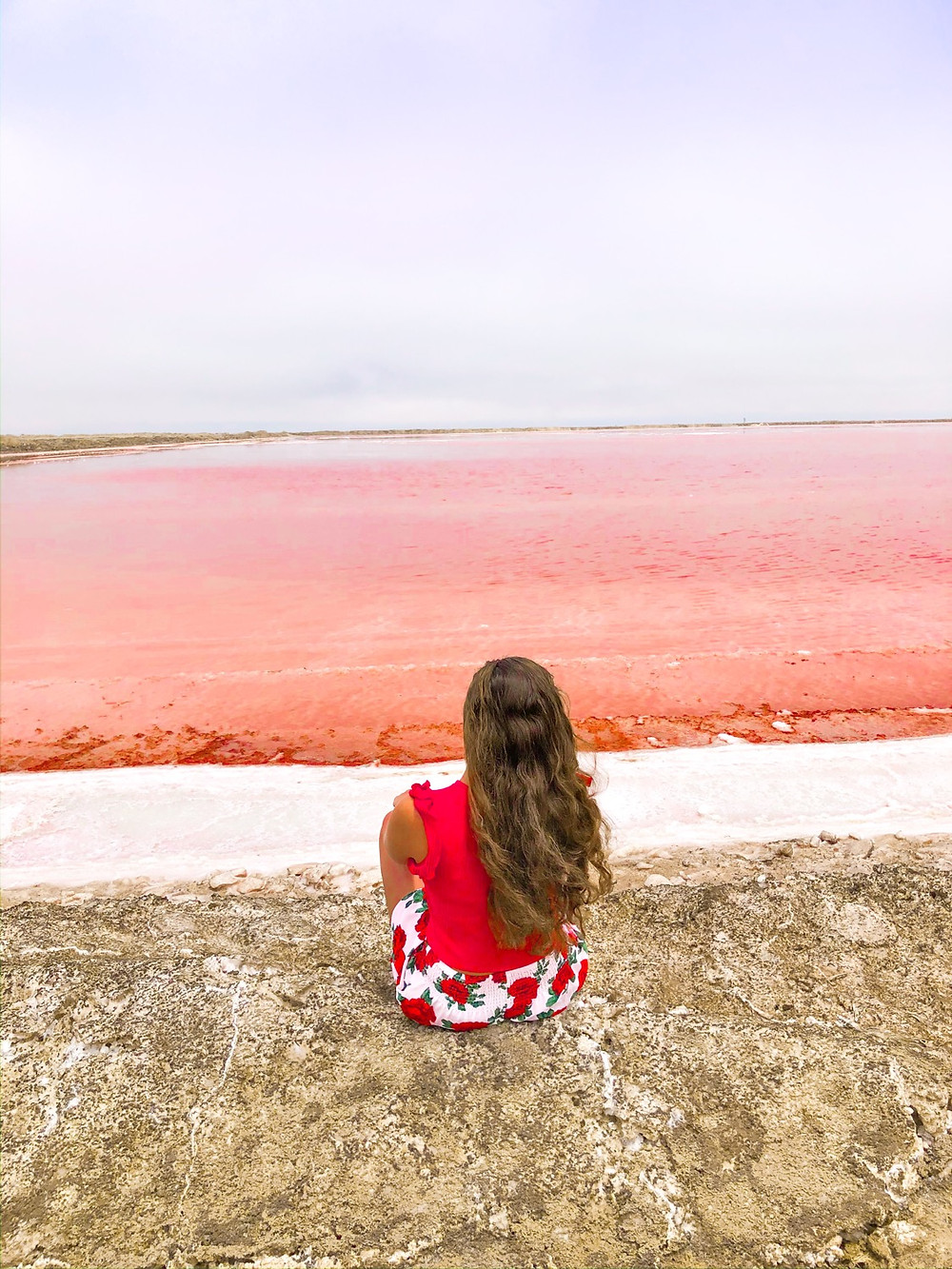 Walfischbucht-Namibia-Pink-Salty-Lake