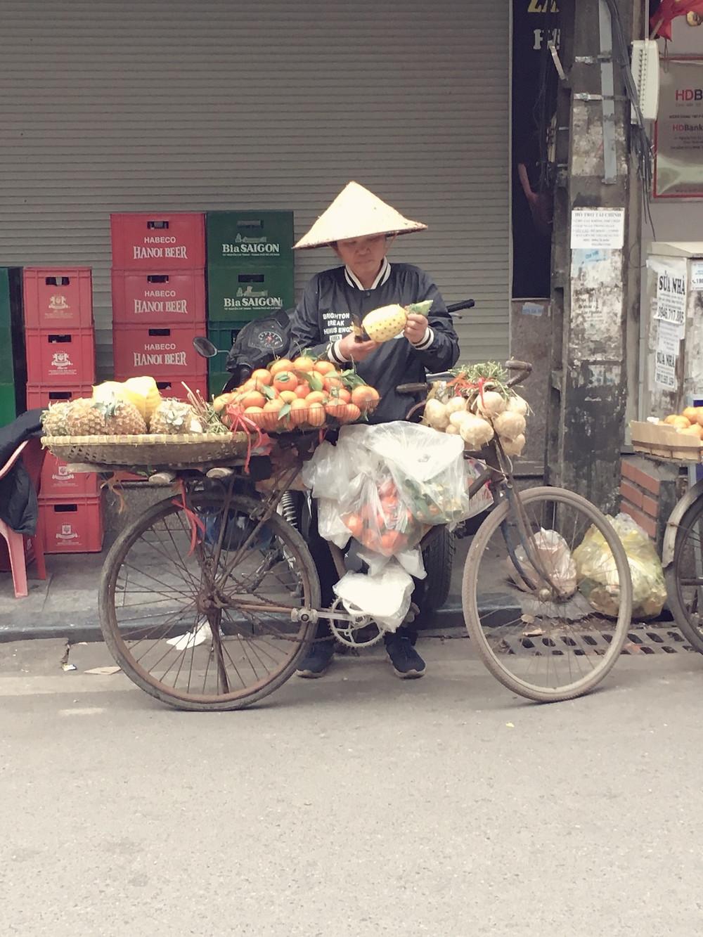 Vietnam-Reiseroute-Rundreise-zwei-Wochen-Kosten