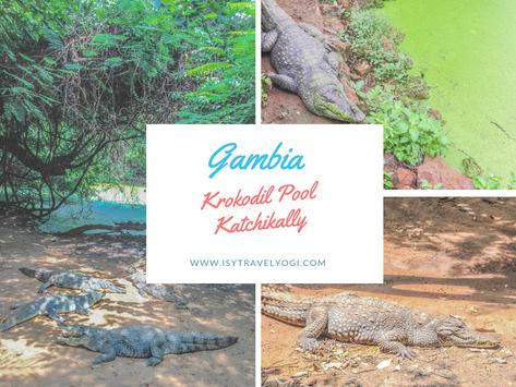 Gambia: Ein Besuch beim Krokodil Pool Katchikally
