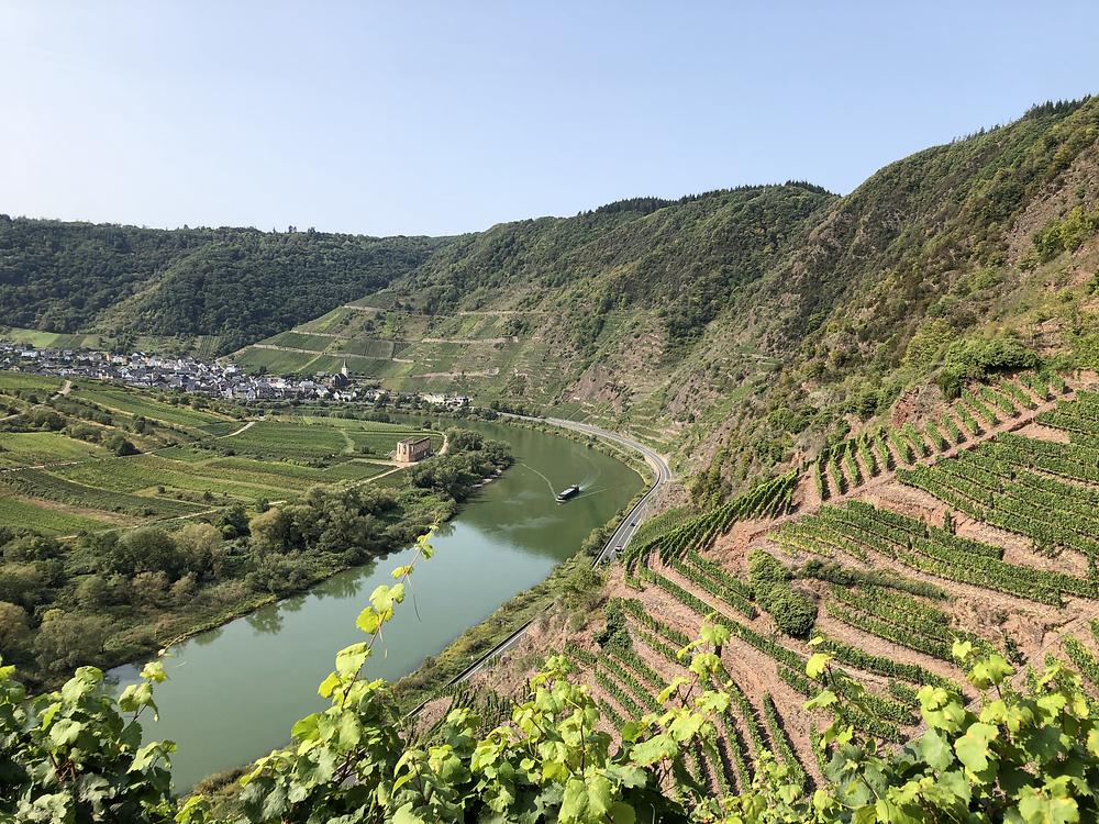 Mosel-klettersteig-calmont-weinberg-wanderweg
