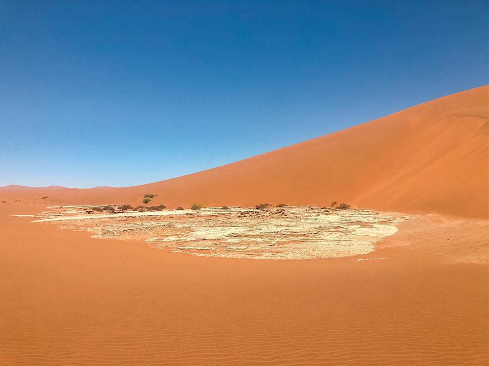 Namibia-Deadvlei-Reisebericht