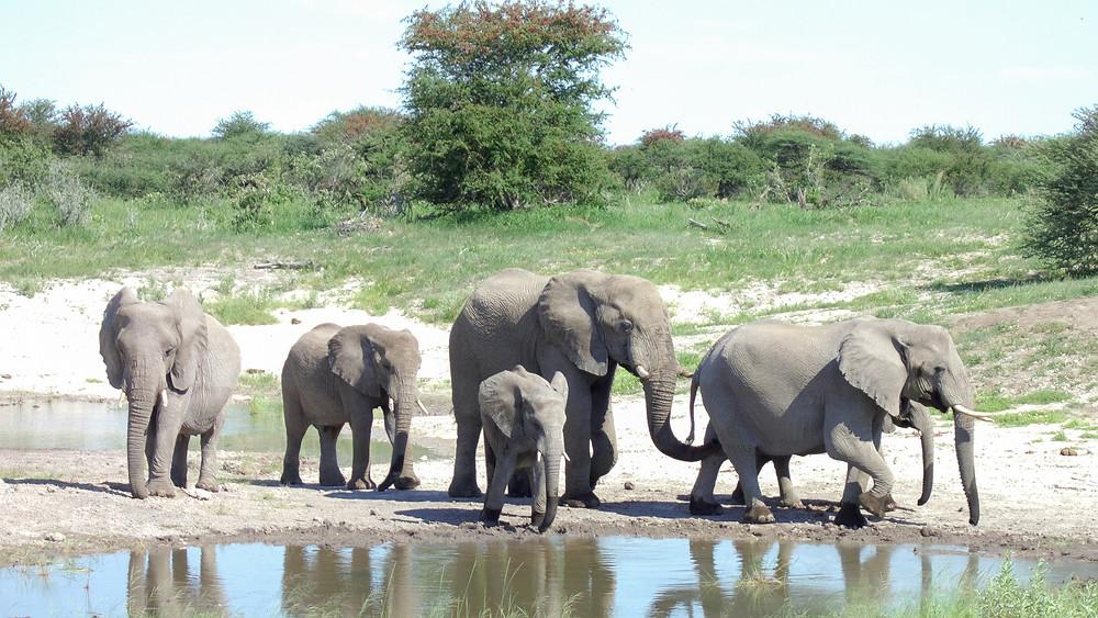 Afrika-Safari-Urlaub-Tipps-Kleidung-Namibia