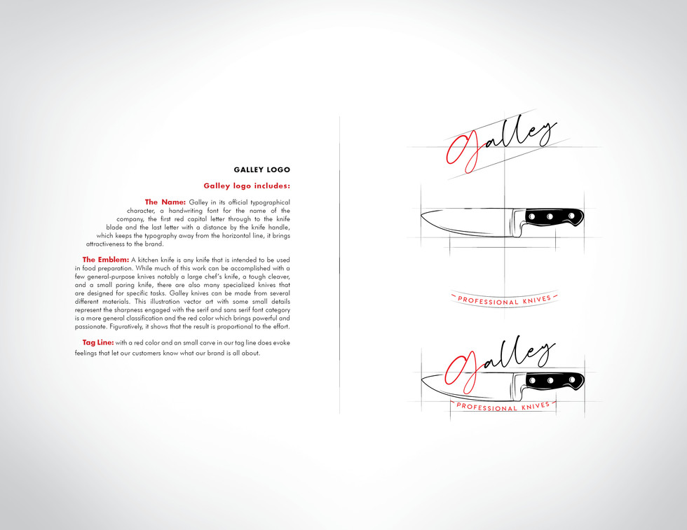 Afshin_Logo Brand Booklet522.jpg