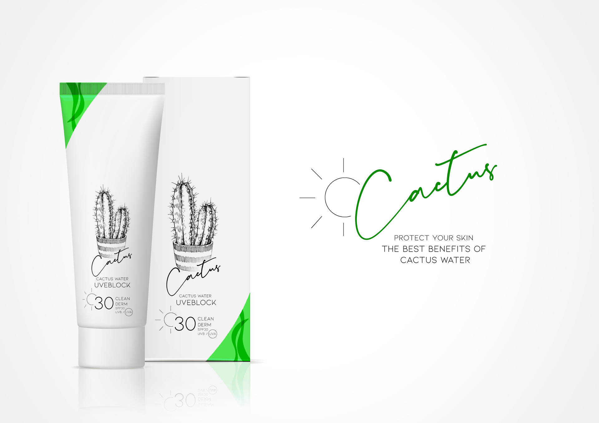 Cactus 04.jpg