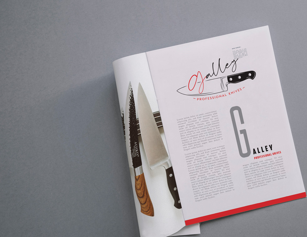 Afshin_Logo Brand Booklet2.jpg