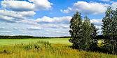 land image.jpg