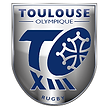 logo TOXIII.png