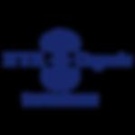 logo nyr.png