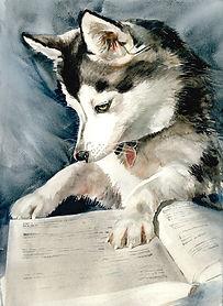 Dog Eared JPG.jpg