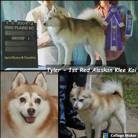 Tyler - First Red AKK
