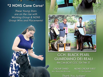 Lihi and Royal's new ad in the Canine Chronicle