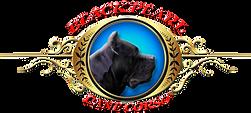 Black Pearl Cane Corso