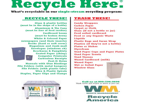 Garbage/Recycle/Compost - What Goes Where?