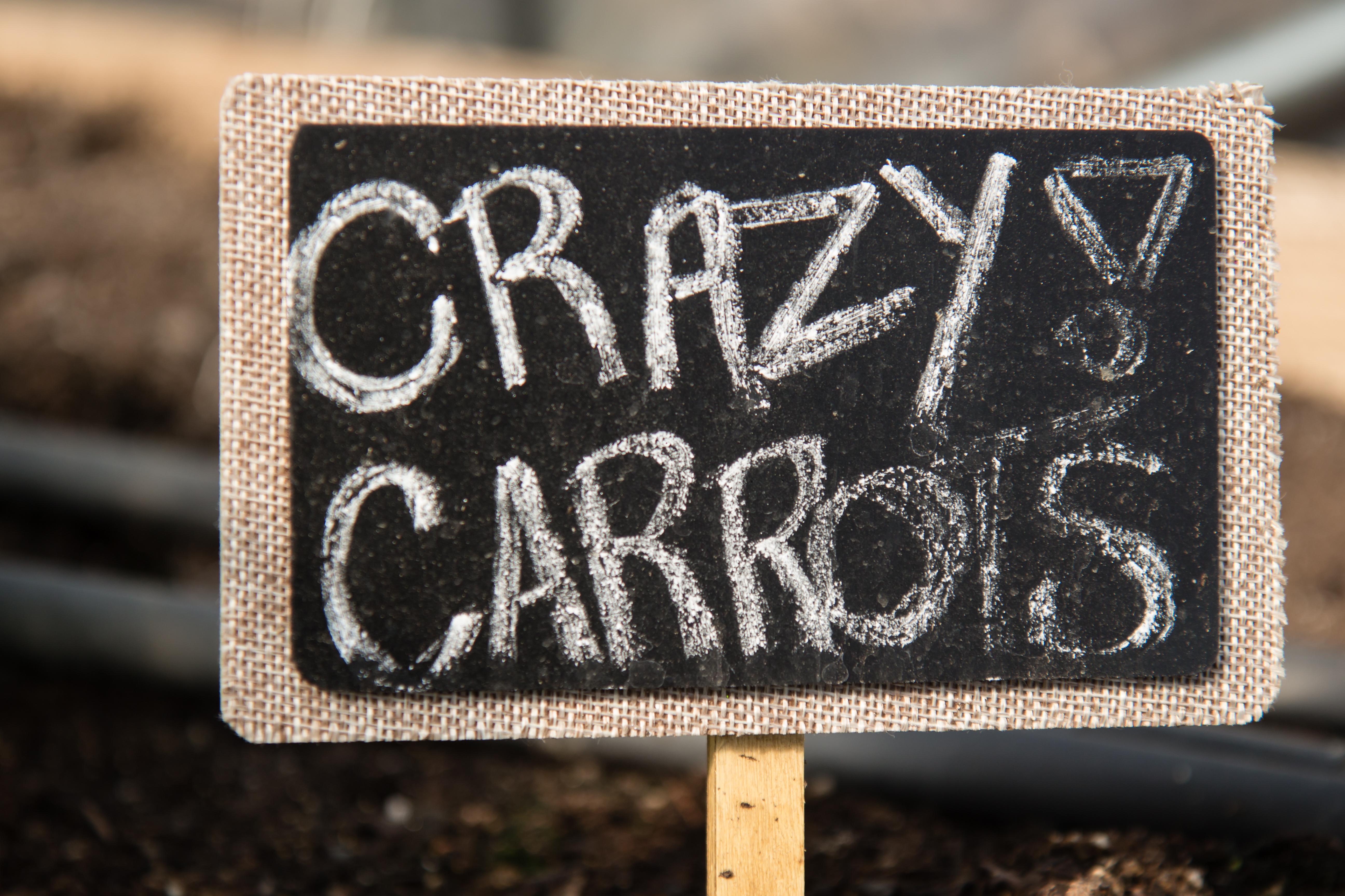Crazy carrots sign