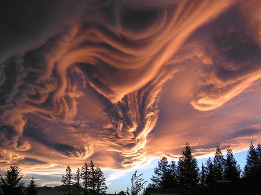 12. Nubes asperatus