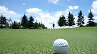 golf-bal-trees.jpg
